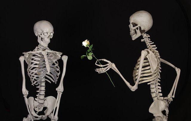 Online-Dating fuer Senioren